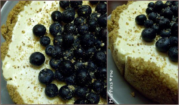 Blueberry-Cheesecake-Collage.jpg
