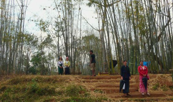 A Myanmar (Inle)30