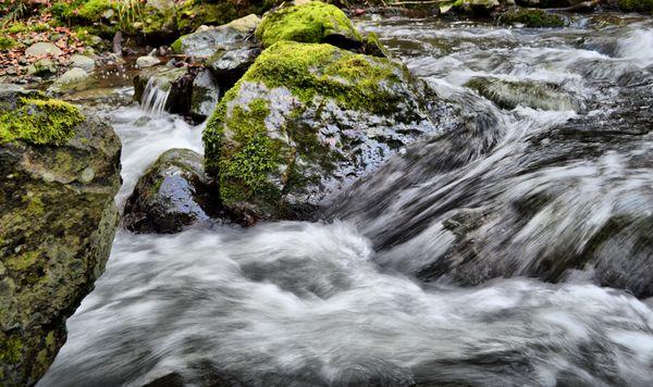 paysages-et-faune 0030-001 fhdr