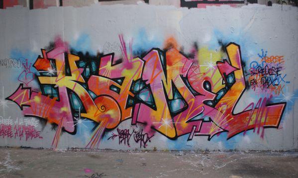 1070 murs 94016 Cachan