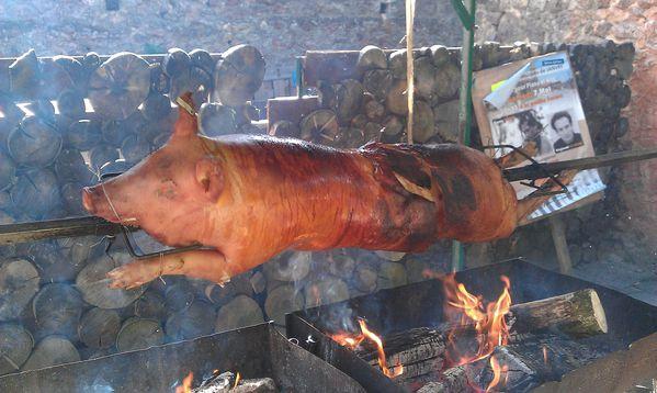 La table des gaulois c 39 est reparti le blog de christian schoettl - Comment cuisiner un roti de sanglier ...