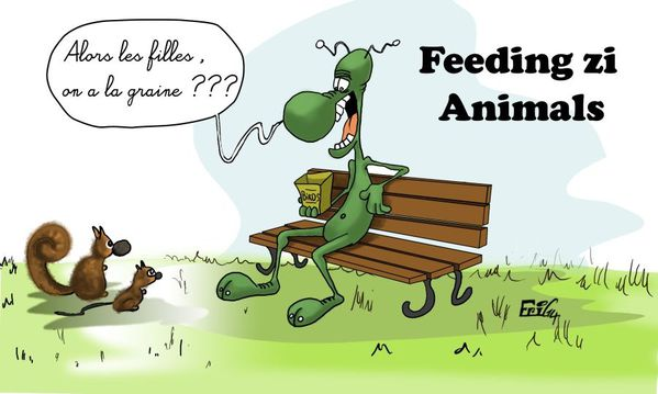 Feed-the-Animals.jpg