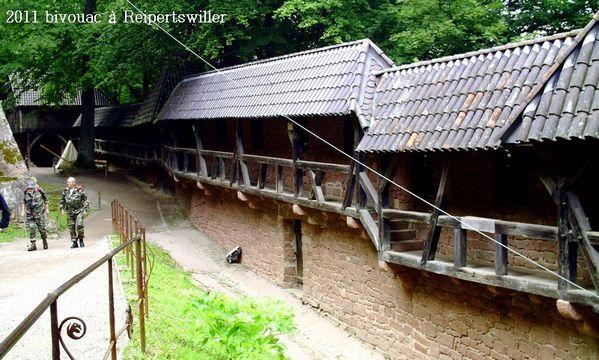 2011-07-30-04 Biwak (Haut-Koenigsbourg)