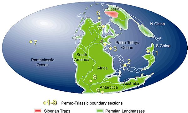 The-Siberian-Traps-and-the-End-Permian-mass-7.jpg