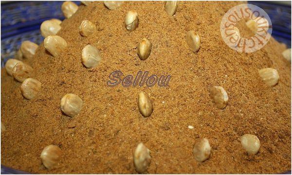 2011-07-26 Sellou1