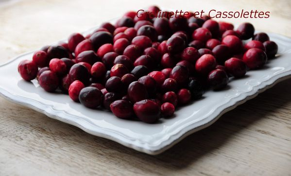 Cranberries3 T-copie-1
