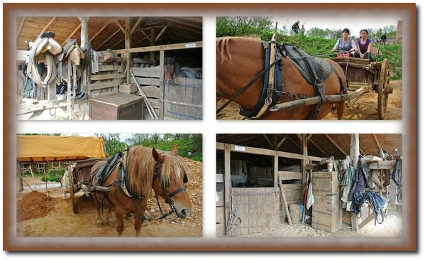 guedelon-chevaux-montage.jpg