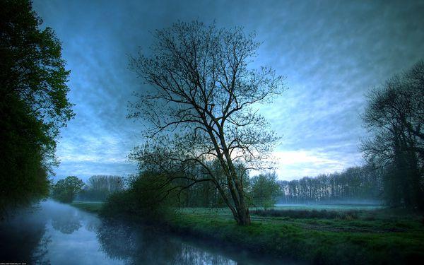 paysage-bleu.jpg