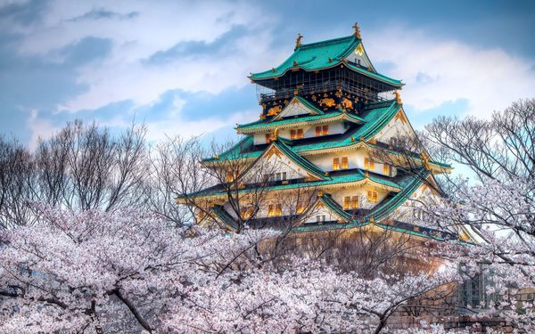 fond ecranThe-temple-of-the-cherry-blossom-season-in-Japan