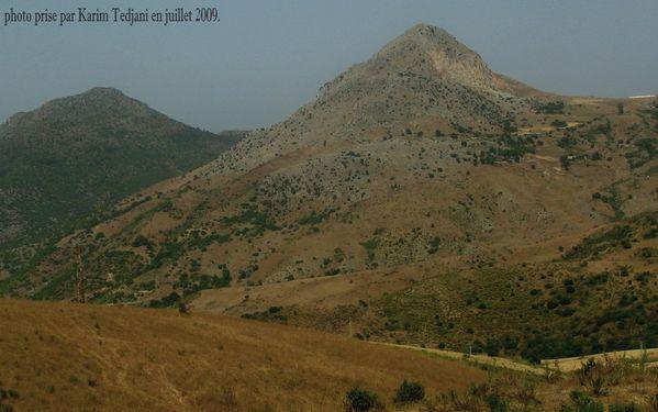 Route Alger 2