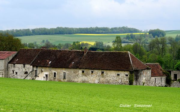 vallee-du-Petit-Morin--.JPG