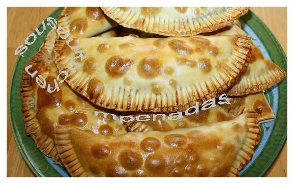 2010-05-12 Empenadas6