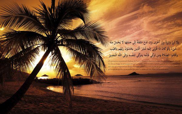fond islam (95)