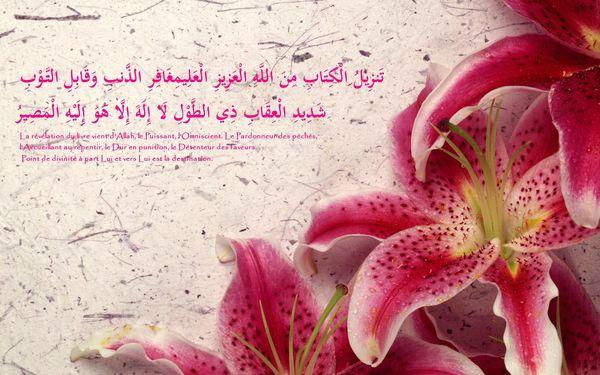 Fond écran islam coran (154)