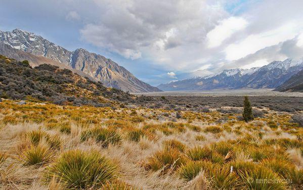 Tasman Valley, Mont Cook National Park 03
