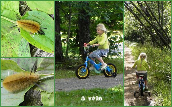 montage a velo