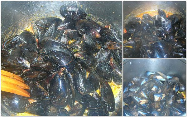 Mussels laura1