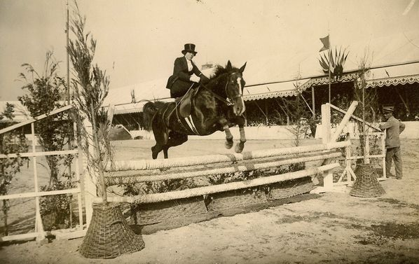 photo-amazone-saut-d-obstacle-equitation-en-amazone-concou.jpg