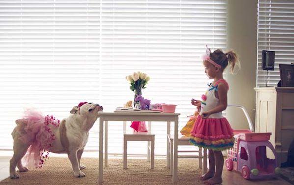 girl-english-bulldog-10