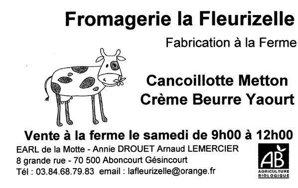 LA-FLEURIZELLE--Resolution-de-l-ecran-.jpg