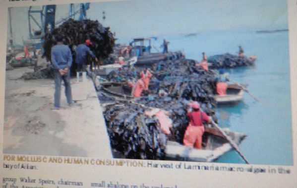 078r BlogED Aquaculture en Chine