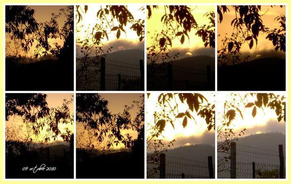 2010-10-09-09.101.JPG