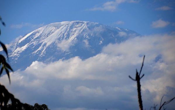 Kilimandjaro (2)