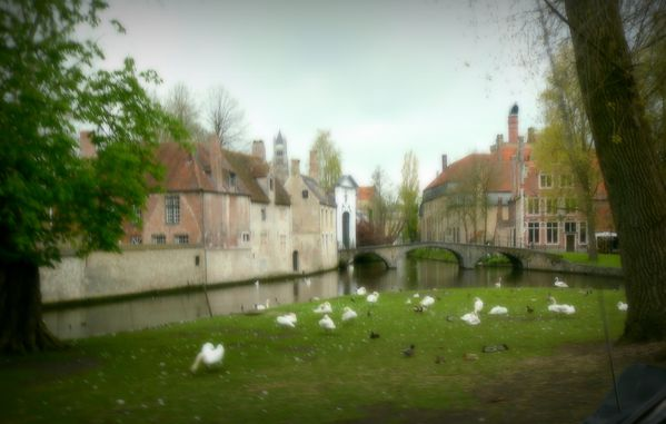 quartier du beguinage bruges-009