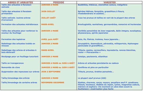 Entretien et taille au jardin le blog de le jardin aux for Entretien jardin particulier 95