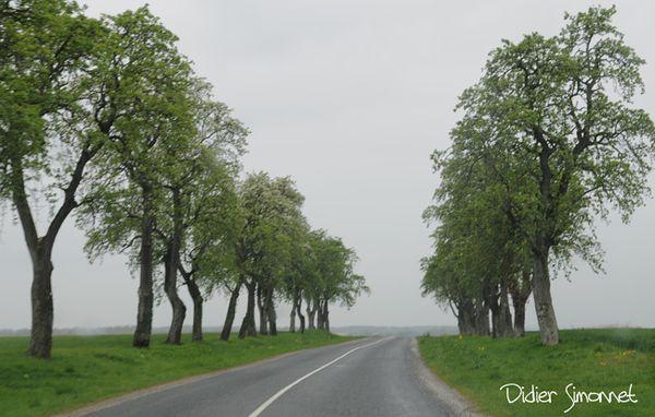 Une route sous la pluie ( Photo Didier Simonnet )