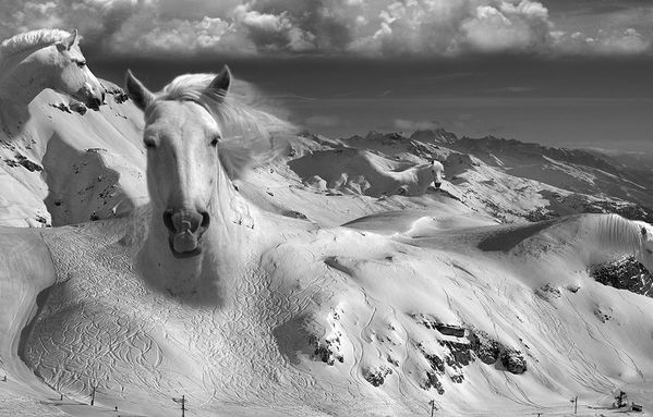 thomas-barbey-Icy-Studs.jpg