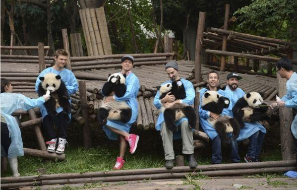sem13juia-Z15-Backstreetboys-avec-des-pandas-Chine.jpg