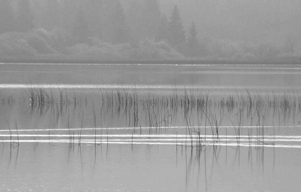 lac mi-octobre 028NB