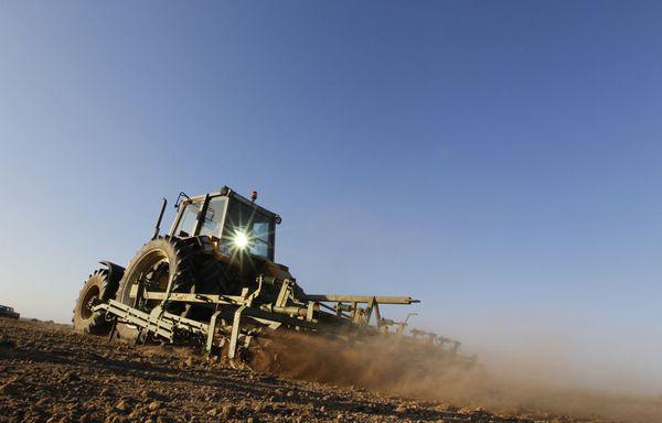 Agriculture-allemagne-essor.jpg