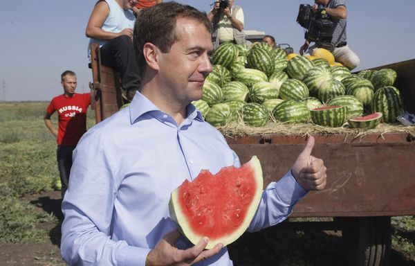 sem71-Z17-Medvedev-Russie-Pasteque.jpg