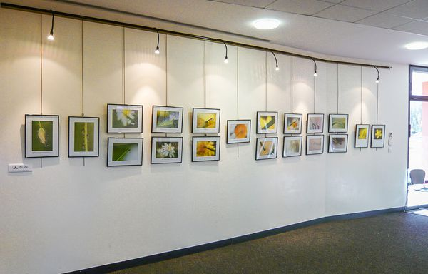 exposiiton-photo-gouttes01.jpg