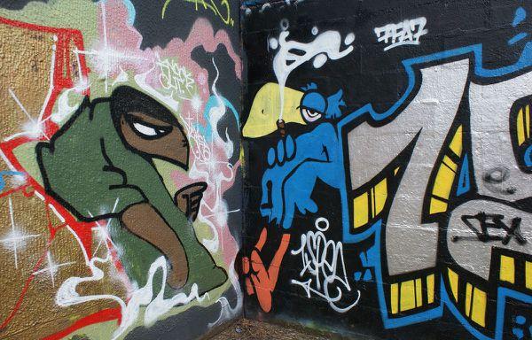 533 parc des Cormailles 94200 Ivry 17 fevrier 2011
