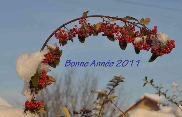 bonneAnnee2011web.jpg