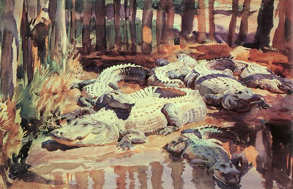 Sargent - Muddy Alligators