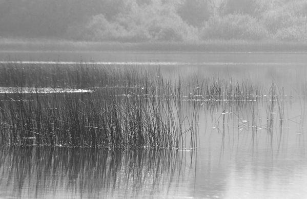 lac mi-octobre 030NB