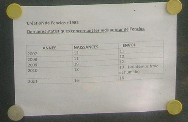 Rencontre-athle-2012-023-bis.JPG