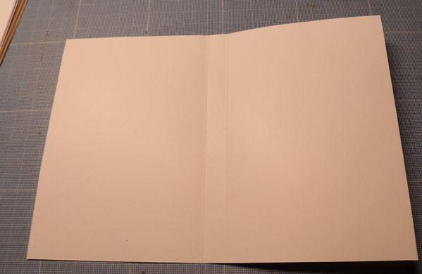 006-copie-4.JPG