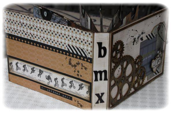 BMX - CATHY - 1
