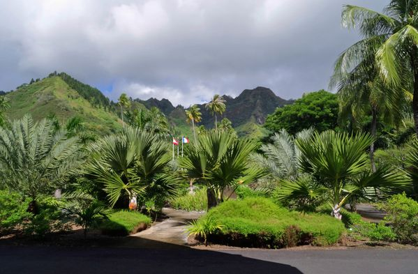 Moorea Intercontinental c
