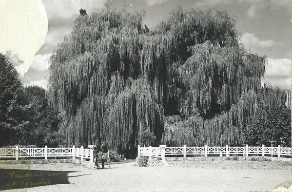 parccressonniereram1958.jpg