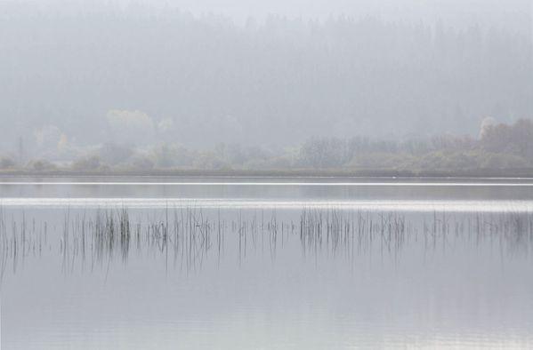 lac mi-octobre 017