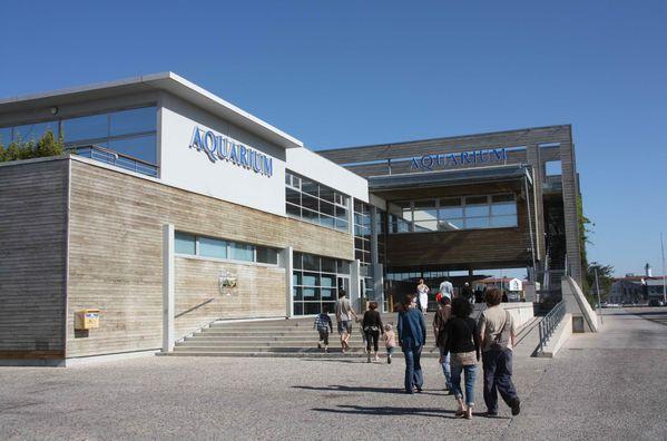 Aquarium-de-La-Rochelle-220-jpg