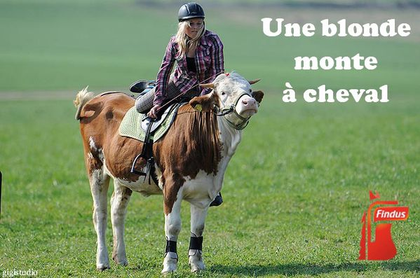 une blonde monte a cheval Findus