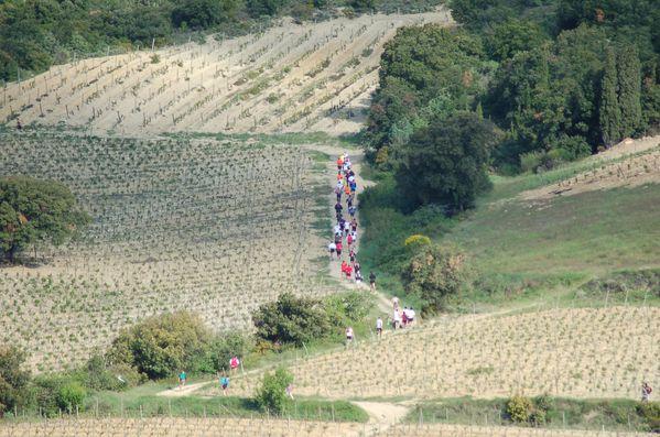 Queribus-2010 0019