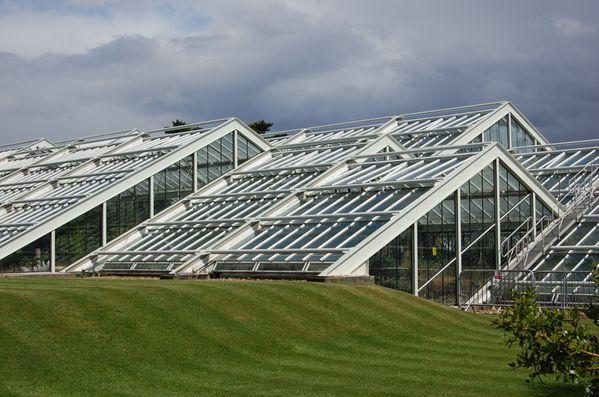 Kew garden le Conservatoire Princesse de Galles (5)